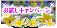 美容室&エステ:アートサロン マリ【脱毛・落ちない化粧】お試しキャンペーン